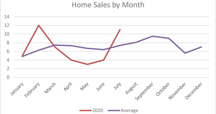 Home Sales Activity Mammoth Lakes